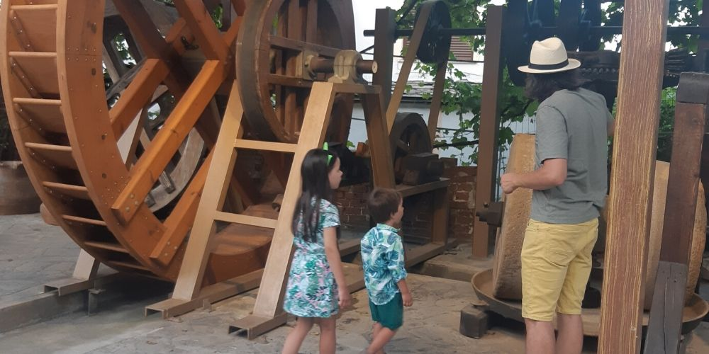 muzeul uleiului de masline