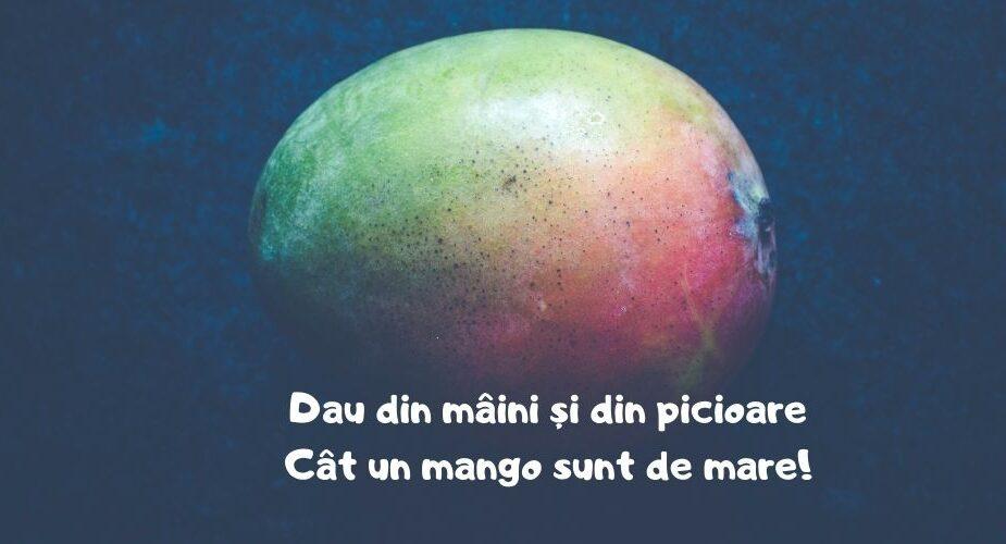un mango